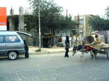 Horse power is still common even in Kabul